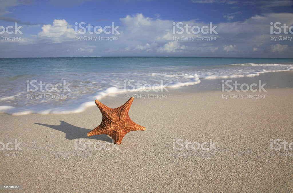 Carribean Beach Scenic royalty-free stock photo