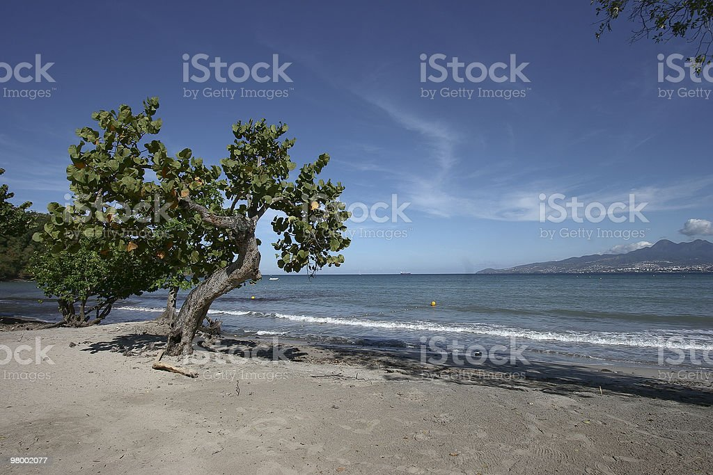 Carribean landscape royalty-free stock photo