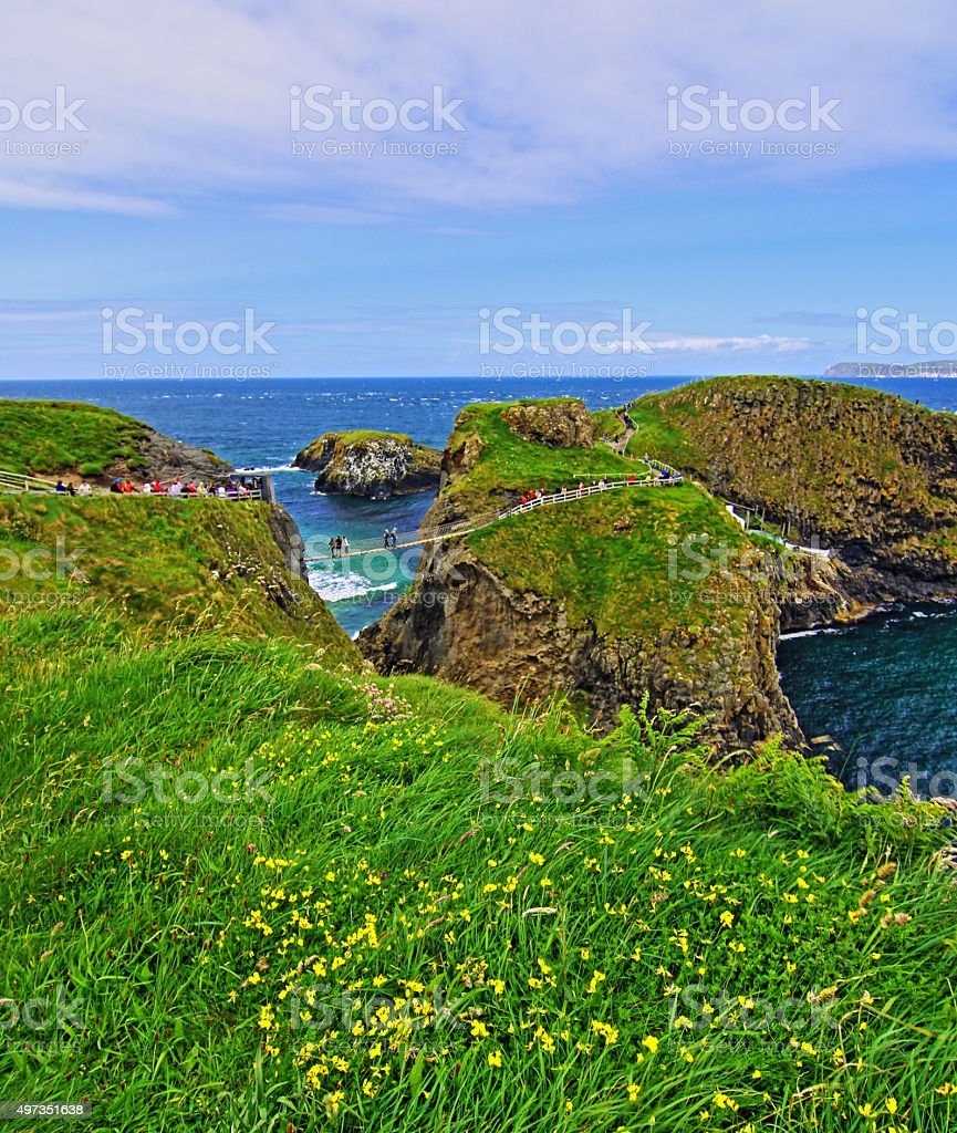 Carrick-a-Rede tiny Irish Coastal Island with flowered bluff overlooking stock photo