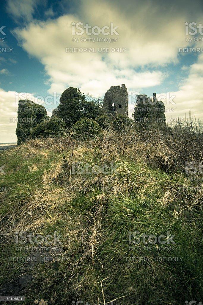 Carrigogunnell Castle, Limerick County Ireland stock photo