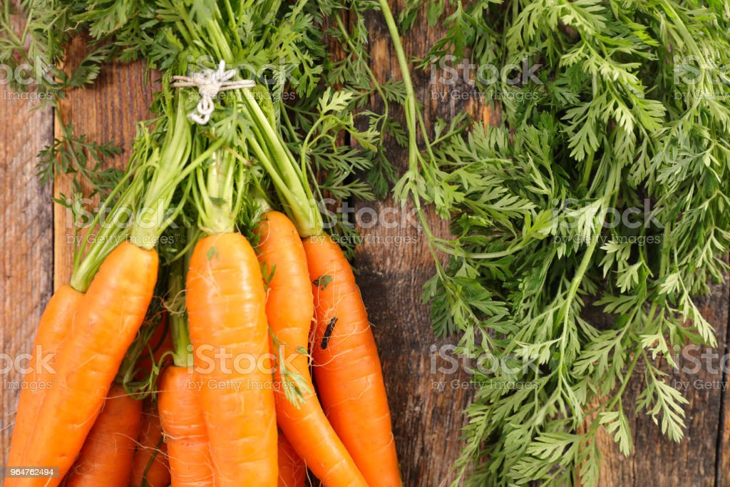 carrot and leaf royalty-free stock photo