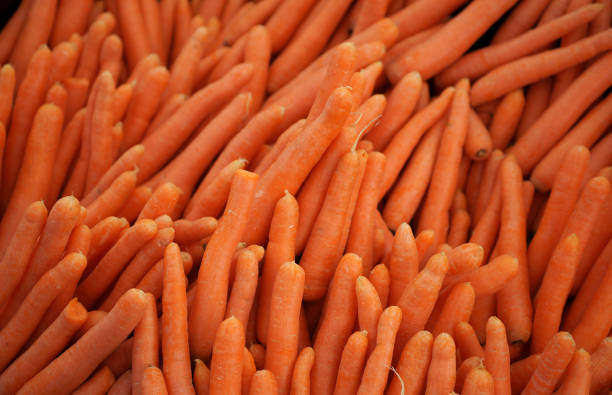 carrot backround stock photo