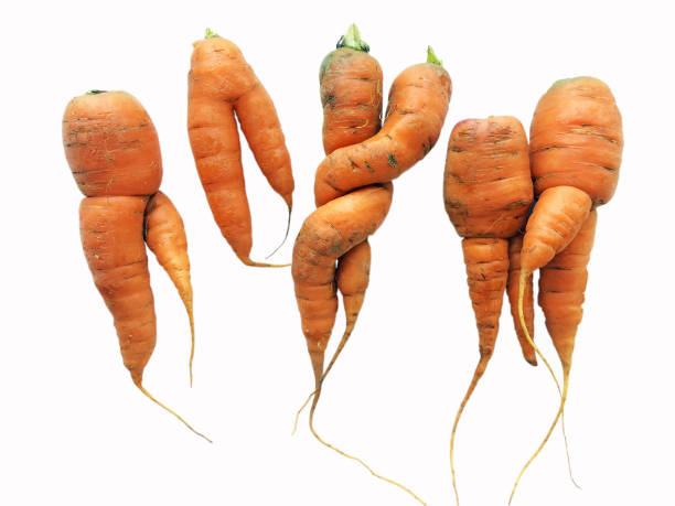 carrot party - disfigure stock pictures, royalty-free photos & images