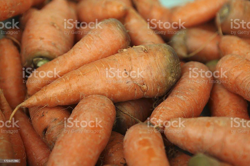 Carrot royalty-free stock photo