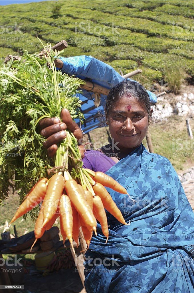 Carrot seller royalty-free stock photo