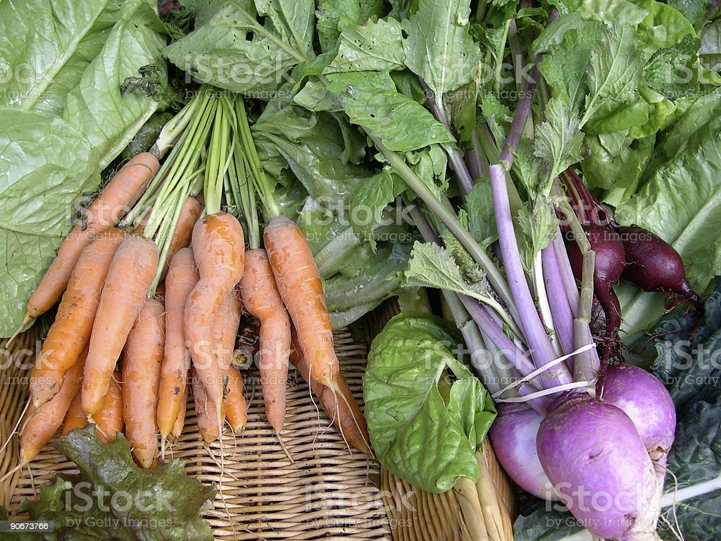 carrots turnips beets royalty-free stock photo
