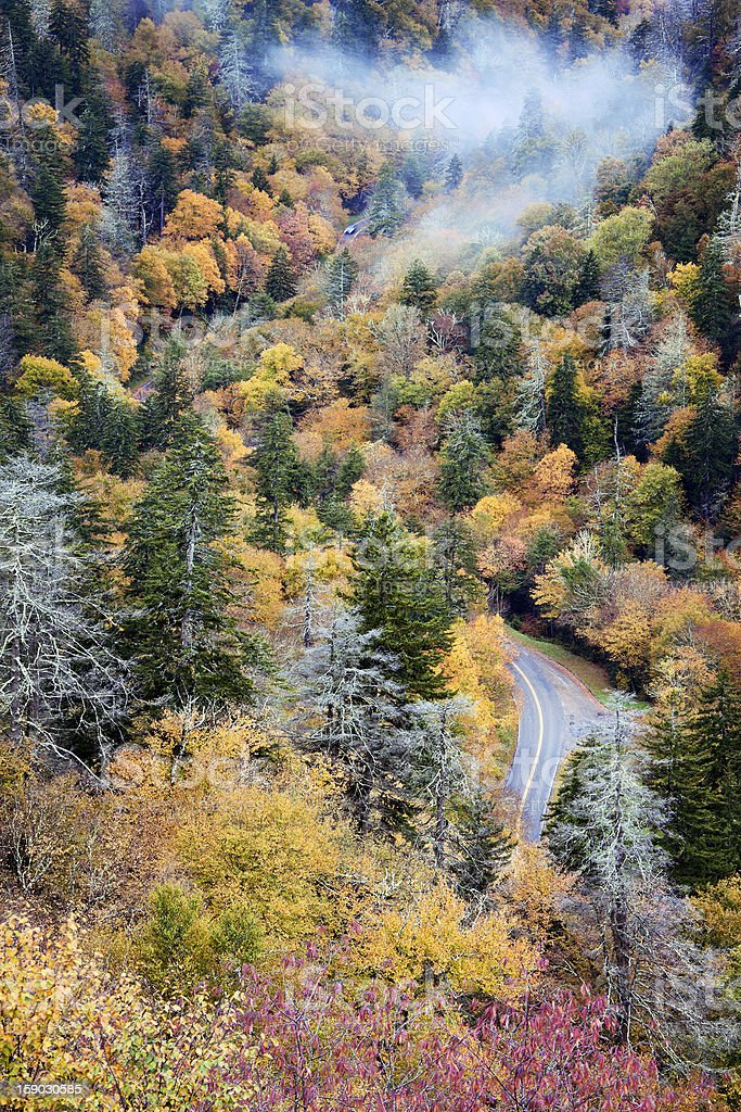 Cars driving through Smoky Mountains royalty-free stock photo