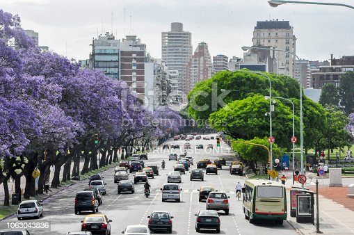 Cars in the traffic of Avenida del Libertador San Martin (Liberator Avenue) during jacarandas blossom at Buenos Aires, Argentina. Since middle until the end of November the city shows purple color everywhere thanks to the blossom of the jacarandas, given to the city an unique beauty.