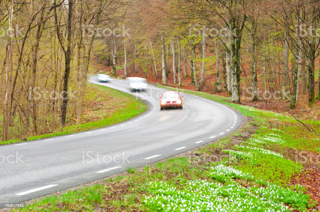 Cars on the way through spring woods royalty-free stock photo