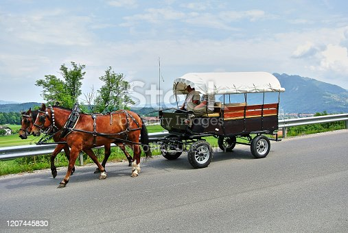 Gruyeres, Switzerland - 06.23.2014: A cart on wheels with two brown horses, a cart of two men, in the background green meadows and alpine mountains, blue sky in the summer afternoon.