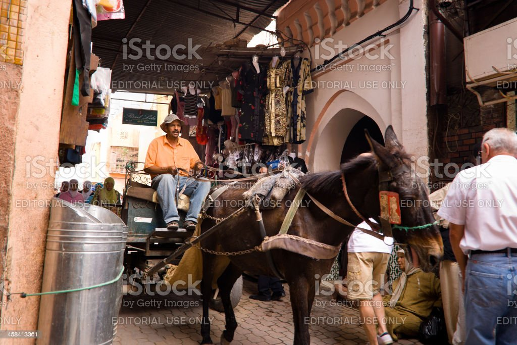 Cart pulled by a Donkey in Marrakesh royalty-free stock photo