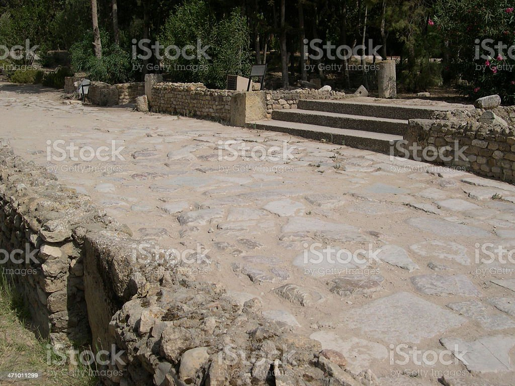 Carthage - Park of the Baths of Antonino Pio royalty-free stock photo