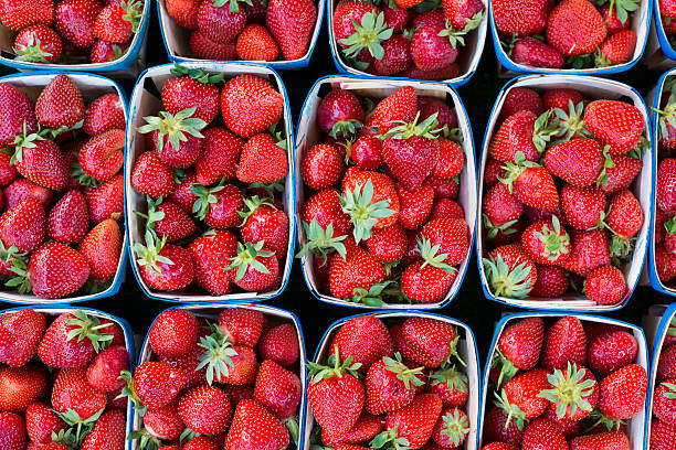 Cartons of fresh strawberries at market in France View directly above freshly-picked strawberries in cartons at the Saturday market in Aix-en-Provence, France fruit carton stock pictures, royalty-free photos & images
