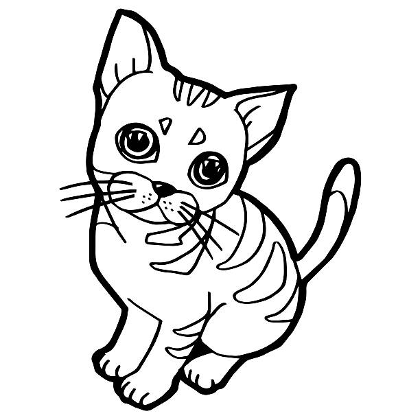 cartoon cat coloring book for kid isolated on white - colouring book stock photos and pictures