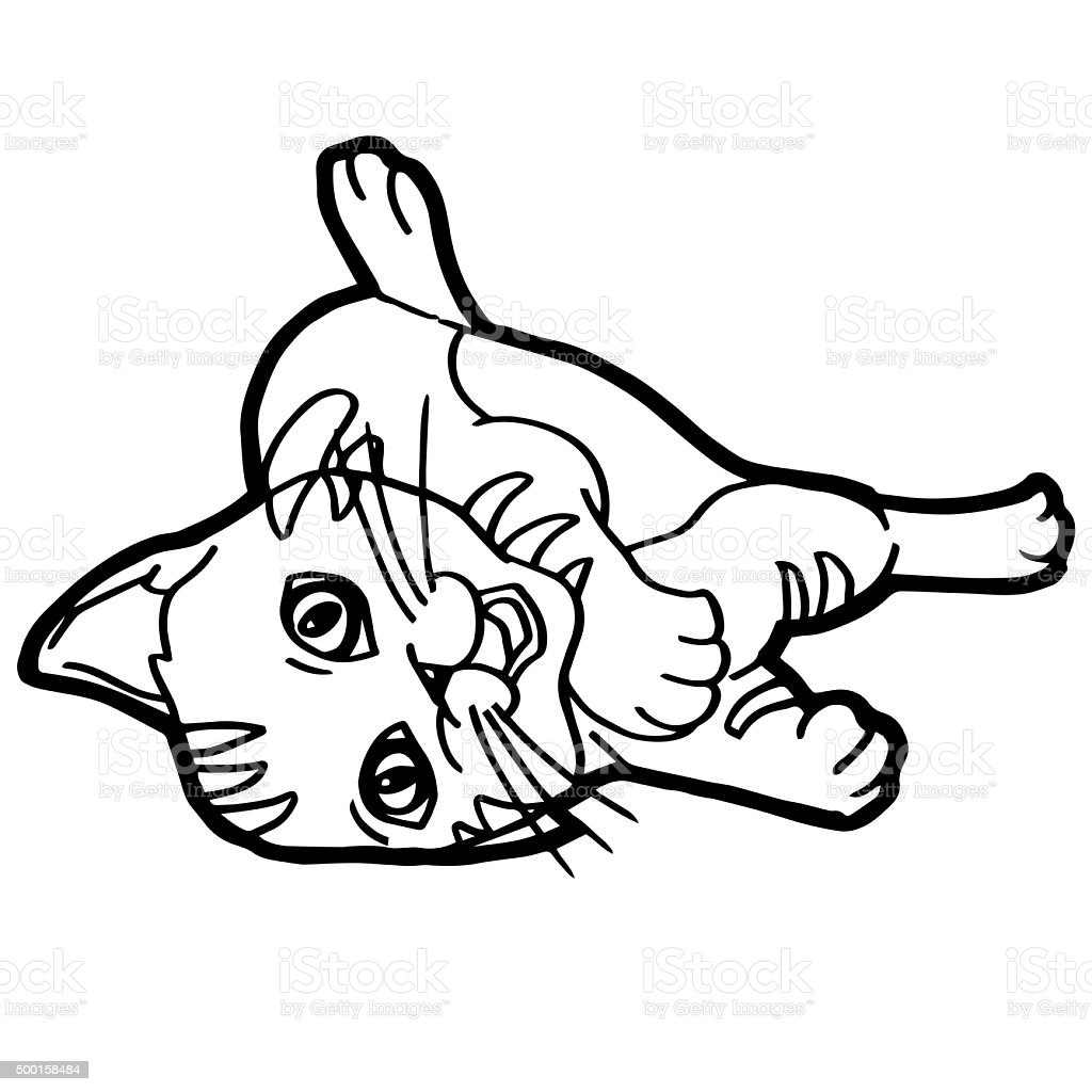 Cartoon Cat Coloring Book For Kid Isolated On White Stock Photo