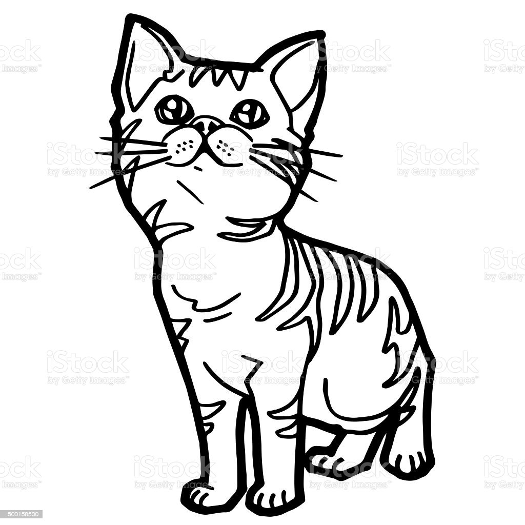 - Cartoon Cat Coloring Book For Kid Isolated On White Stock Photo