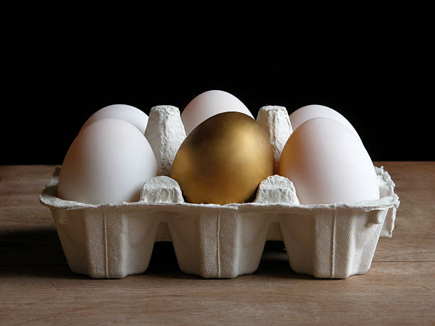 Cartoon of eggs with a golden egg in the center A golden egg turns up in an egg carton. nest egg stock pictures, royalty-free photos & images