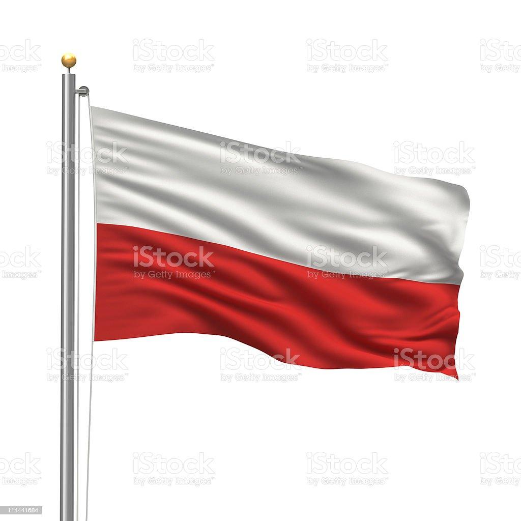 Cartoon on Poland flag waving on flagpole stock photo