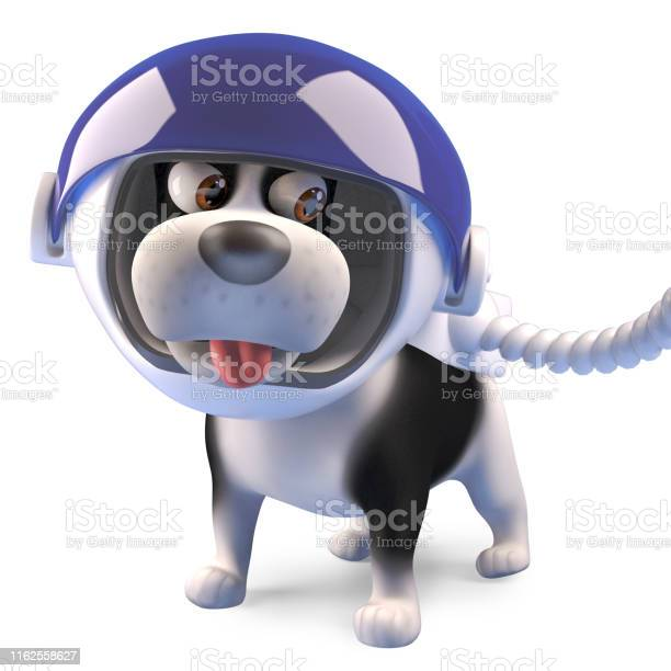 Cartoon puppy dog wearing a spacesuit and helmet 3d illustration picture id1162558627?b=1&k=6&m=1162558627&s=612x612&h=8gdx9xrliotbccn8lgbybjynkoozxz3oihuavfefeks=