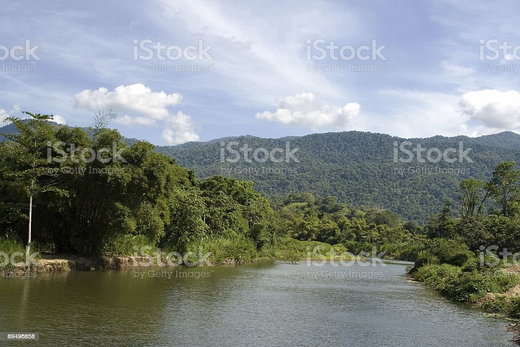 Caruao´s River royaltyfri bildbanksbilder