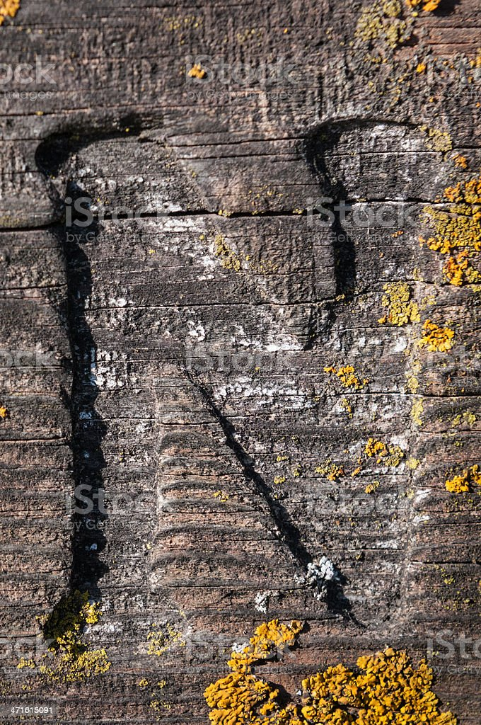 N Carved into Lichen Covered Board royalty-free stock photo