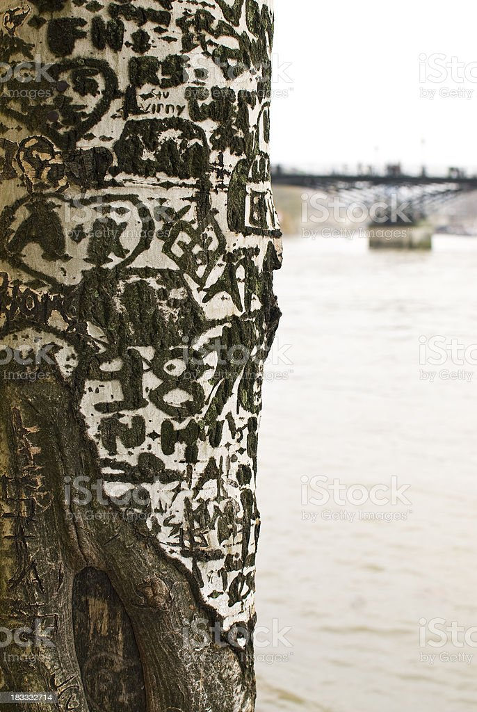 Carvings in a birch tree beside the Seine stock photo