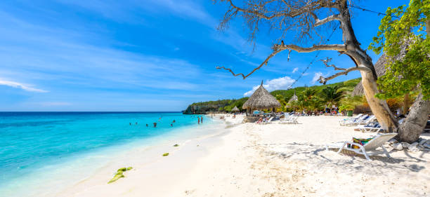 Cas Abao beach - paradise white sand Beach with blue sky and crystal clear blue water in Curacao, Netherlands Antilles, a Caribbean tropical Island