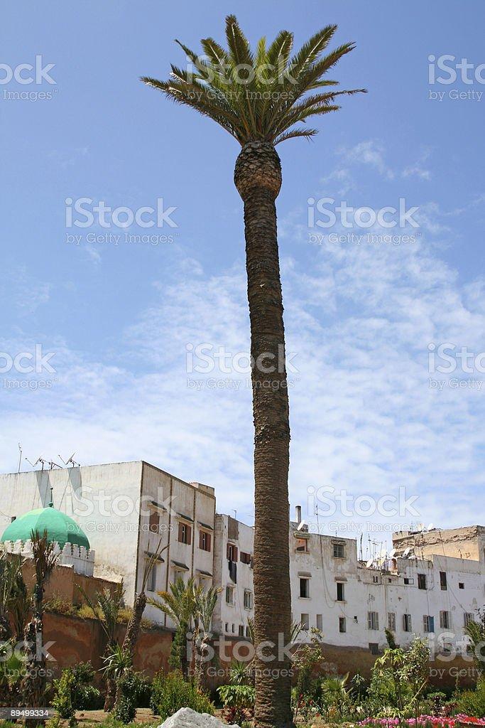 Casablanca, la Medina foto stock royalty-free
