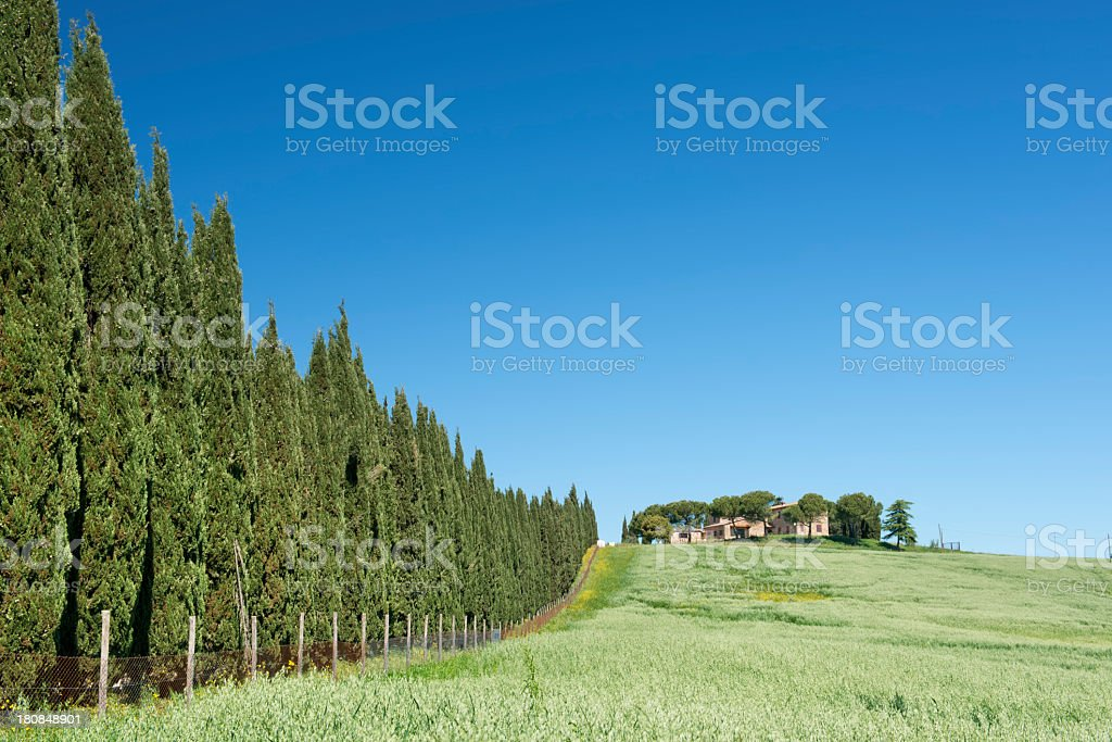 Casale in Toscana royalty-free stock photo