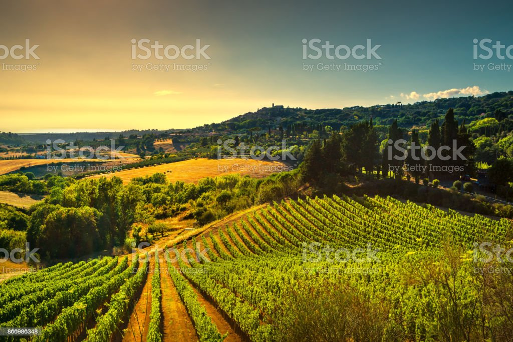 Casale Marittimo village, vineyards and landscape in Maremma. Tuscany, Italy. stock photo