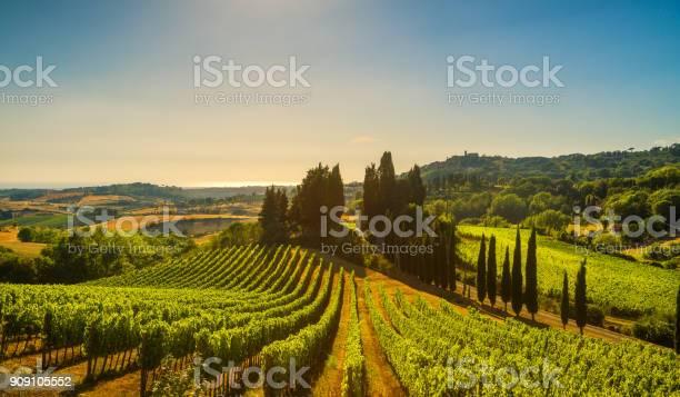 Casale marittimo village vineyards and landscape in maremma tuscany picture id909105552?b=1&k=6&m=909105552&s=612x612&h=knxgbsz5gcnntcu3wammswuj6vurfixe4elbasd3gpi=