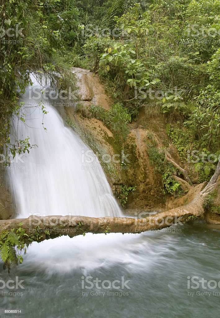 Cascadas di Agua Azul Cascata del Chiapas e Messico foto stock royalty-free