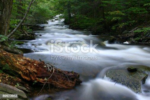 istock Cascade at Ricketts Glen Forest 89923953