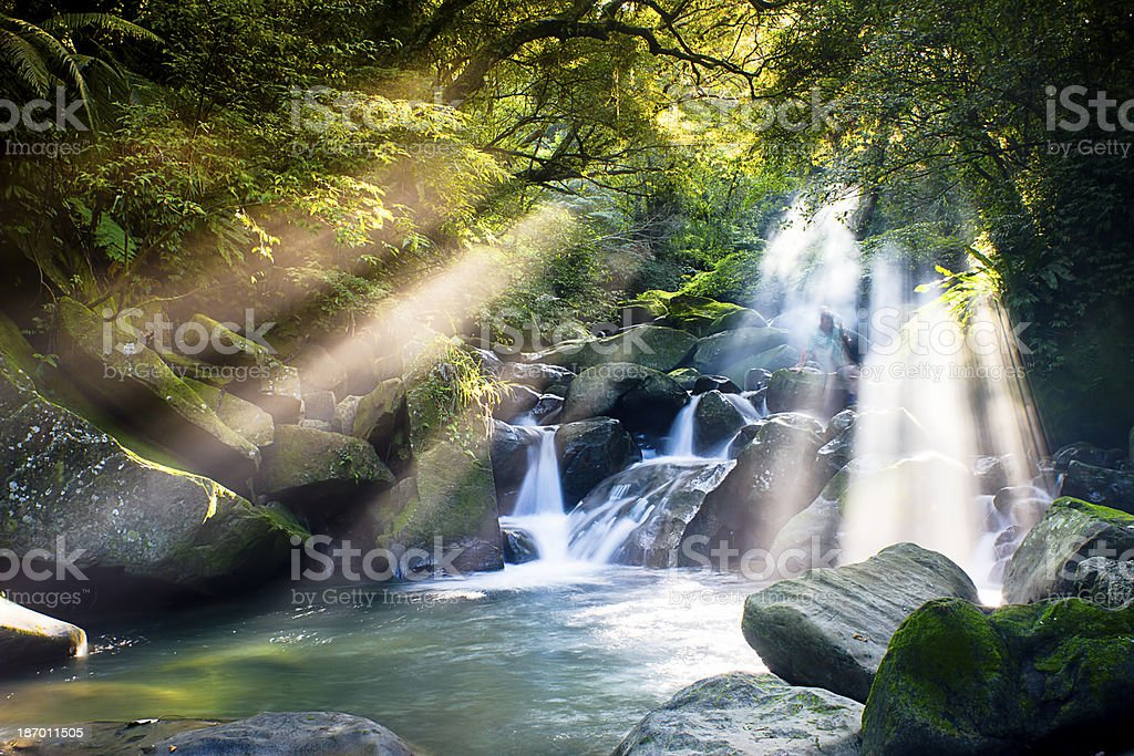 Cascade falls over mossy rocks stock photo