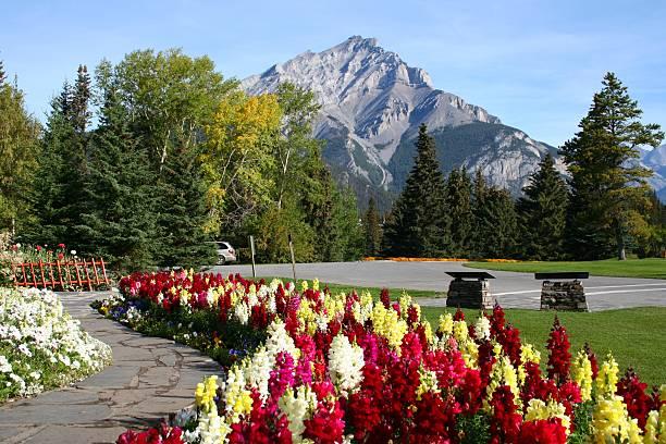Cascade Mountain in Banff National Park stock photo