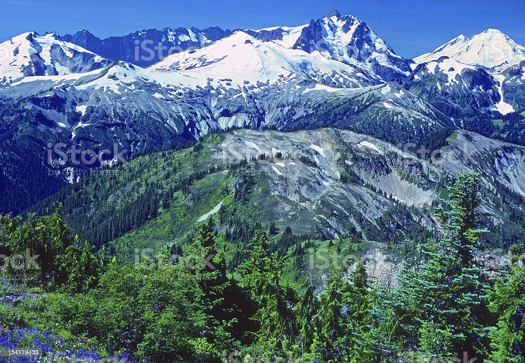 Cascade Mountain Panorama royalty-free stock photo