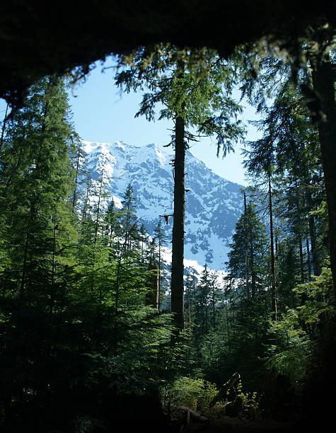 Cascade-Berge – Foto