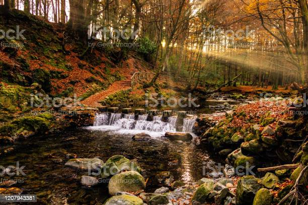 Photo of Cascade on river and footpath with sunbeams shining through branches in golden coloured autumn trees