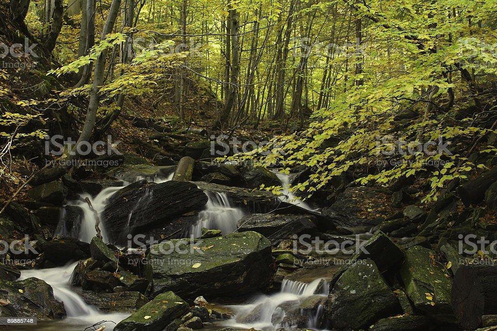 cascade river royalty-free stock photo