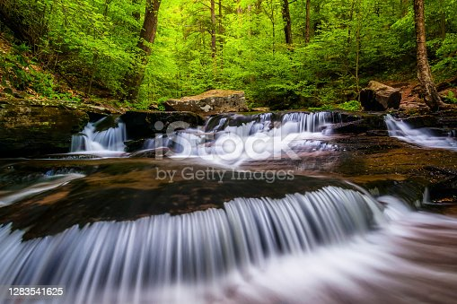 istock Cascades and bright spring greens on Glen Leigh, in Ricketts Glen State Park, Pennsylvania 1283541625