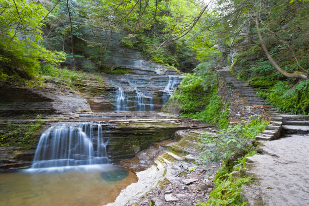 Cascades Cascades formed by a steep drop of Buttermilk Creek.  Summer within the gorge of Buttermilk Falls Park. michael stephen wills waterfall stock pictures, royalty-free photos & images