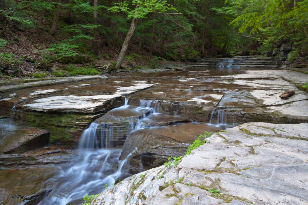 Cascades, Summertime A lower summer stream volume yield these gentle cascades within lush gorge walls.  Summer within the gorge of Buttermilk Falls Park. michael stephen wills waterfall stock pictures, royalty-free photos & images