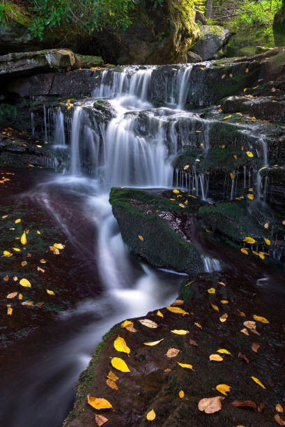 Cascading water and fall colors stock photo