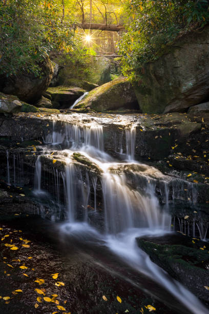 Cascading water and yellow leaves stock photo