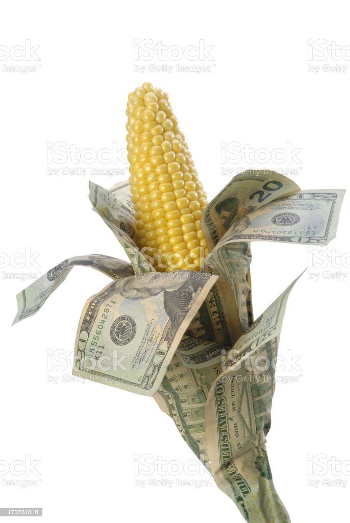 Cash Corn royalty-free stock photo