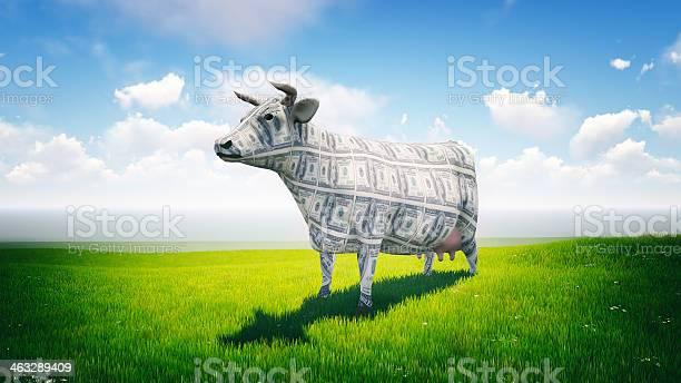 Cash cow picture id463289409?b=1&k=6&m=463289409&s=612x612&h=gwreuv vwg88mr2lglf zxuluraza4dtrkd3vfdvpbc=