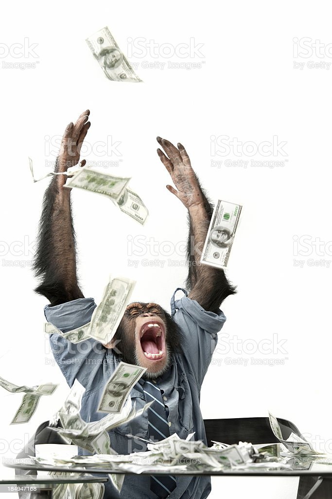Cash falling on male chimpanzee stock photo