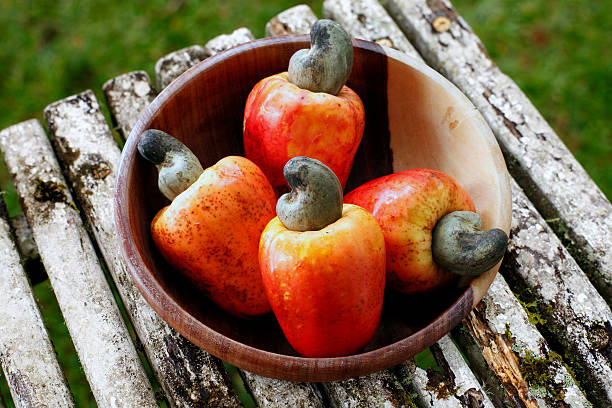 cashew fresh originating from para, brazil - cashew stock photos and pictures