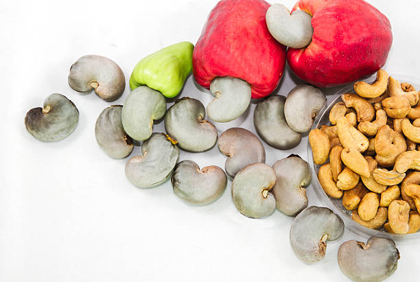 Cashew nuts stock photo