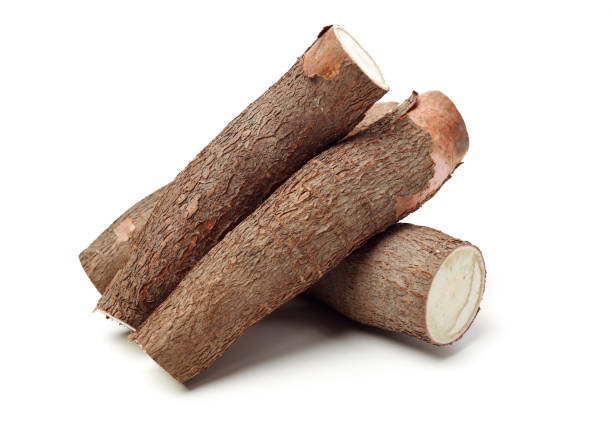 Cassava isolated on a white background – zdjęcie